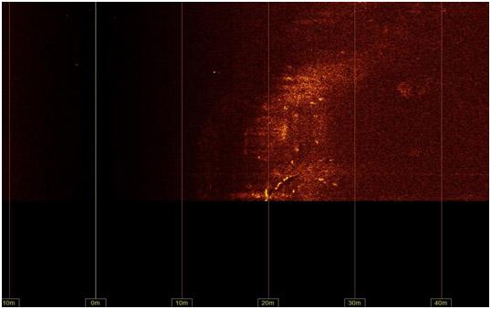 Сонограмма АНПА Iver с видимым искусственным объектом.